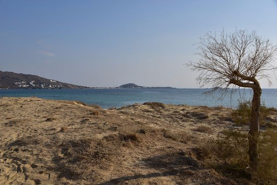 Πλάκα, Ελλάδα: View of the beach across the road from the hotel