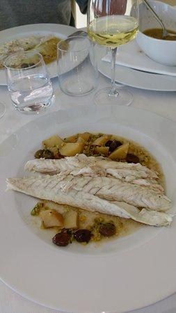 Barracuda Innamorato