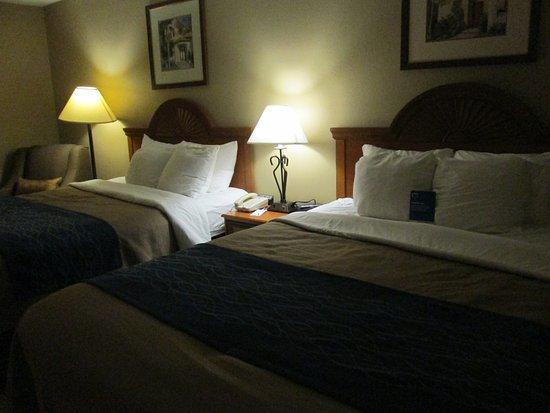 Comfort Inn & Suites: Room 201