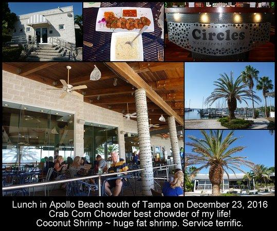 Restaurants Apollo Beach Seafood