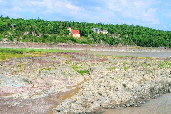 Last view of Grosse Ile