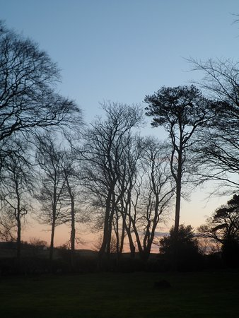 Auchencairn, UK : Winter garden at sunset