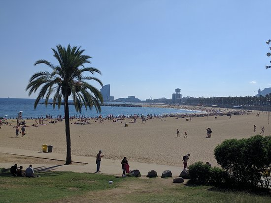 Barcelona Day Tours: Spent some time walking around Port Olympic.
