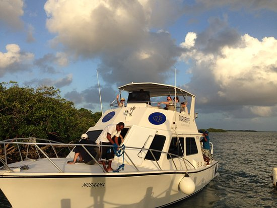 Turneffe Island, Belice: Dive Boat for Blue Hole Day