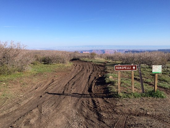 Porcupine Shuttle: Kokopelli Trail Head