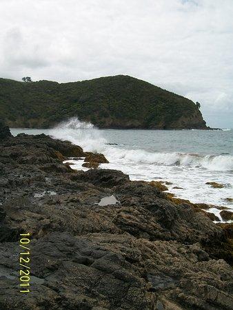 Bilde fra Whangarei