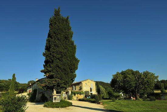 Le Mas en Provence