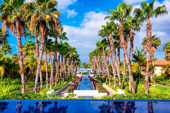 The St. Regis Punta Mita Resort: Altamira Lobby at day