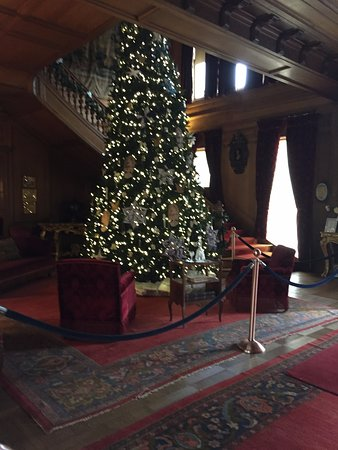 Staatsburg, NY: tree in entrance area near stairway