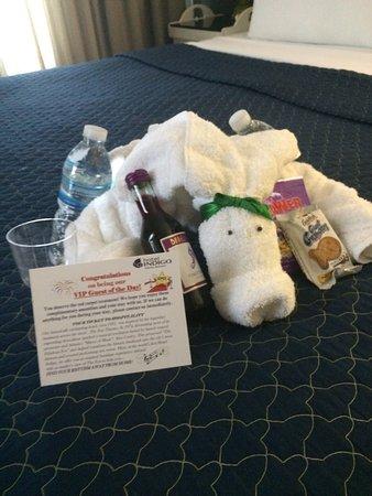 Hotel Indigo Atlanta: photo0.jpg