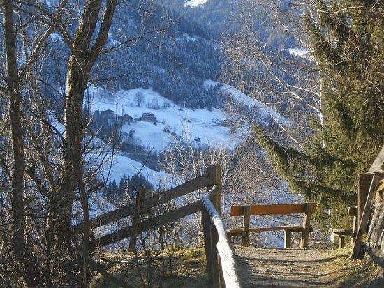 Komfortbauernhof Zittrauerhof: Höhenweg - wunderschön