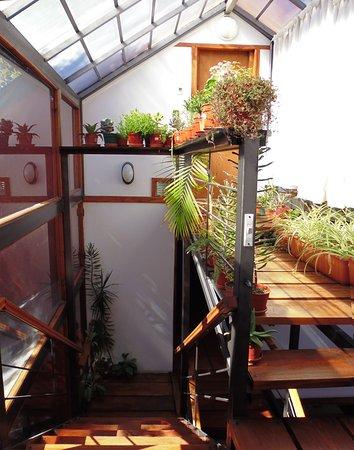 Mirando al Sur: Escaleras