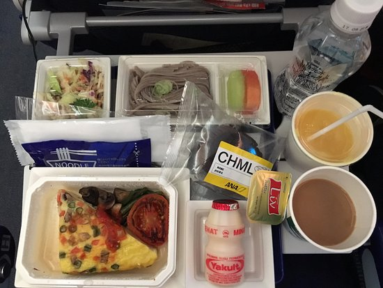 ana all nippon airways child meal