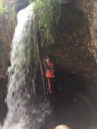 Molino de Sabandia: photo0.jpg