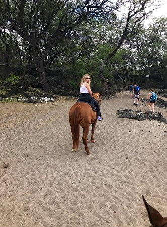 Makena Stables: Ginger giving me the ride of a lifetime.