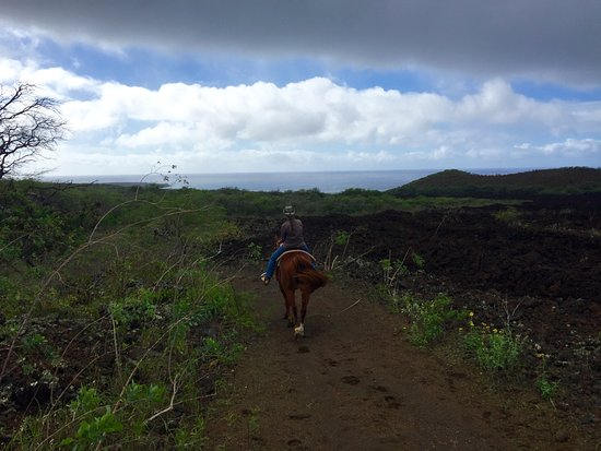 Makena Stables: My guide taking us through the lava fields
