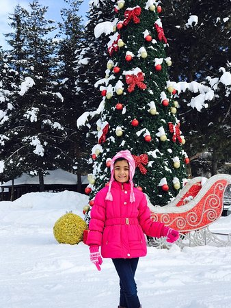 hyatt place jermuk beautifully decorated christmas tree n sledge view from room balcony at