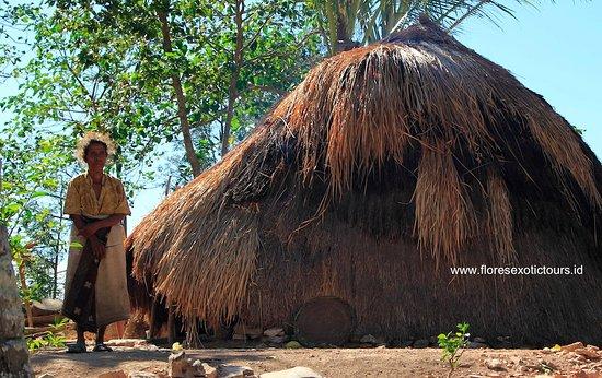 Nusa Tenggara Timur, Indonesia: Sumba Timor Alor, Explore Tours