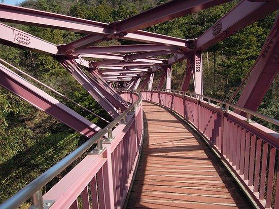 Ayatori Bridge : あやとり橋