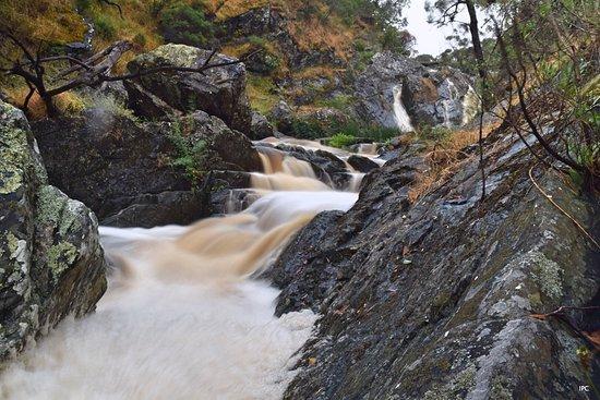Hindmarsh Valley, Australia: Slightly downstream of the falls