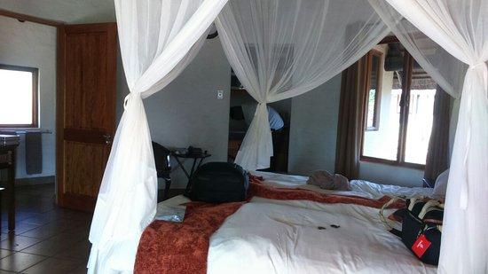 Zululand Safari Lodge: IMG-20161228-WA0009_large.jpg