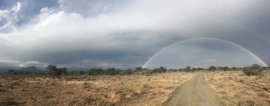 Eastern Cape, Afrique du Sud : Rainbow in Camdeboo