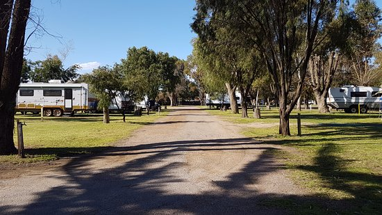 Esperance Seafront Caravan Park: Powered sites