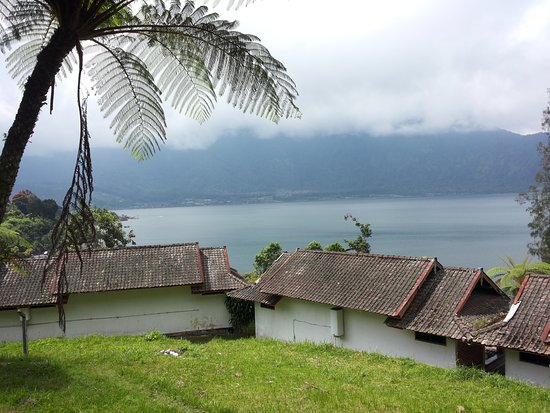 Baturiti, Indonesia: View from the slope in the back of room