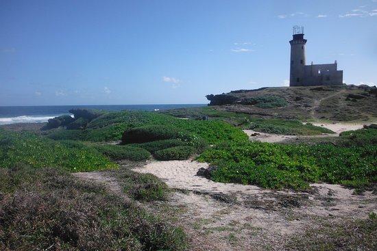 Île du Phare