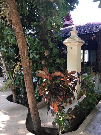 Chang Puak Hotel: photo4.jpg