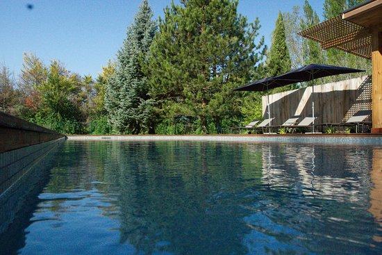 Le Thor, Frankrike: piscine 5x15
