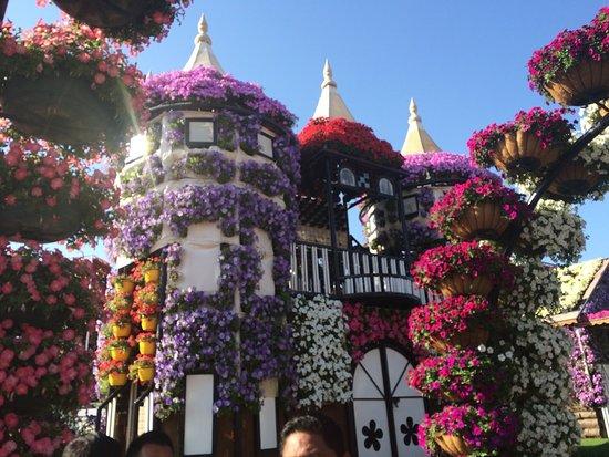 Дубай дома в цветах купить недвижимость на кипре у моря