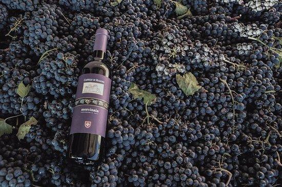 Morcinaia - Castello di Magione - Vino Rosso