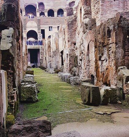 Residenza Maximus: IMG_20161124_011801_large.jpg