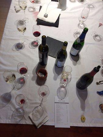 Sant Pau d'Ordal, สเปน: degustación vinos Albet i Noya
