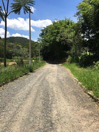 Parque Represa Dr. Jovino Silveira: Lugar muito bonito !