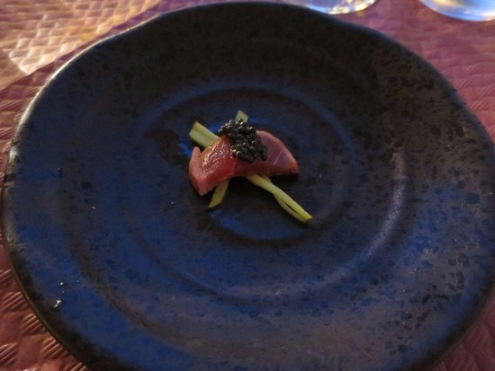 Fusion Food and Lounge: Appetizer, tuna