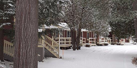 Bartlett, NH: Cottages Winter Wonderland