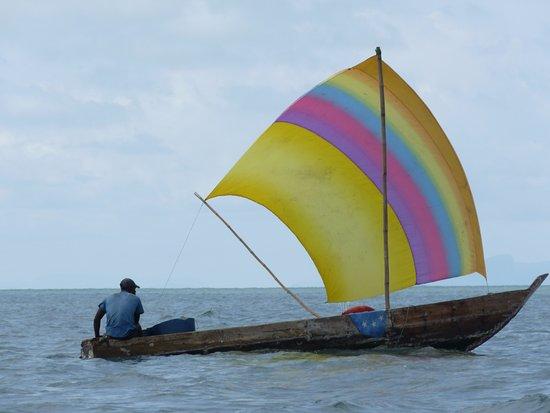 Roume, Guinea: A voir photo réelle
