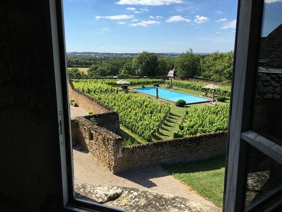 Piscine au milieu des vignes photo de chateau de labro for Piscine onet le chateau