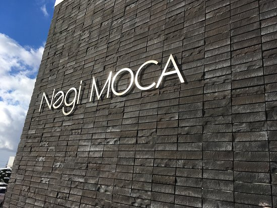 Nagi Museum Of Contemporary Art