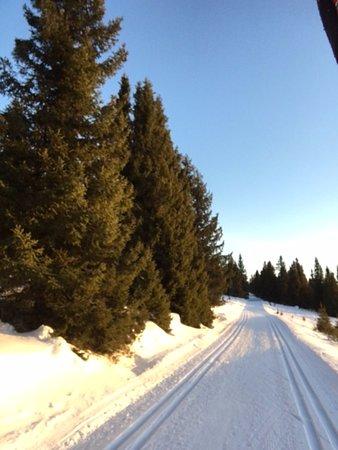 "Municipio de Ringebu, Noruega: Ski runs around Kvitfjell mountain, this is from ""Gumpen"""
