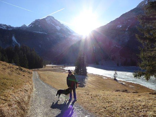 Hotel Alpenland Lauenen: Lauenensee