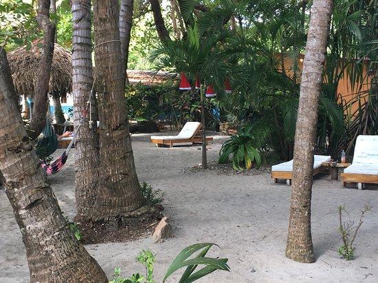 Fenix Hotel - On The Beach: photo5.jpg