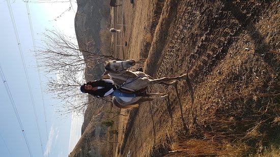 Akhal-Teke Horse Riding Center: Merhabalar bugün defne isimli atla tur yaptık herşey çok harikaydı. Herkese tavsiye ederim atlar