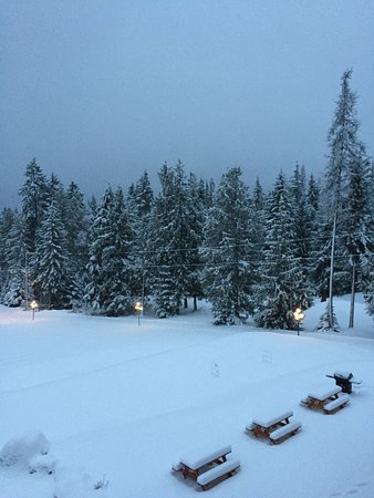 Kootenay Lakeview Spa Resort & Event Centre: View of grounds from balcony