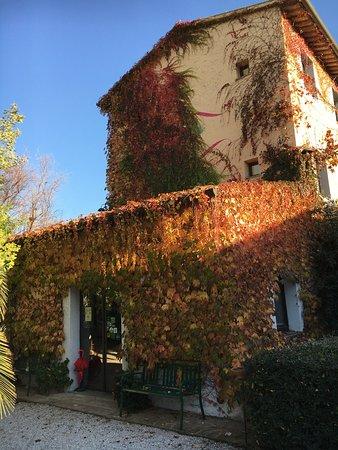 Campastrello Sport Residence Hotel: photo3.jpg