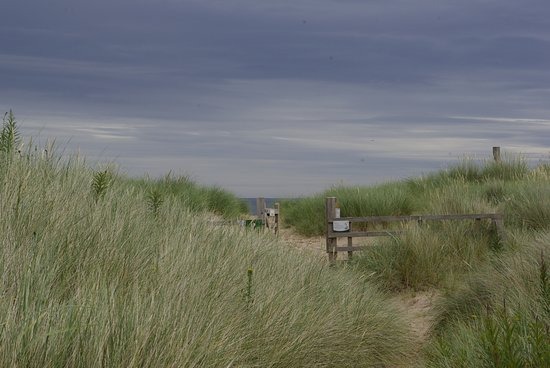 Chatton, UK: Ross Sands beach
