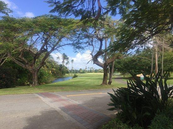 Wyndham Garden at Palmas del Mar: Exteriores