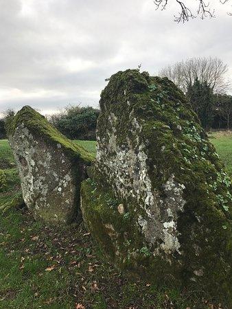 Bruff, Irland: photo4.jpg